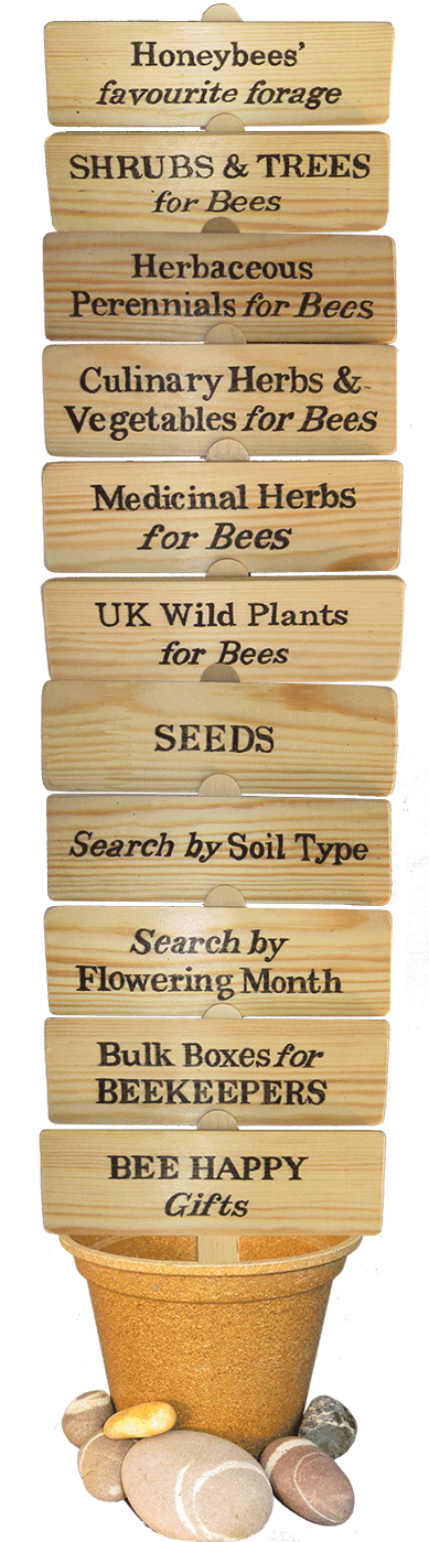 organic plants for bees